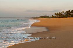 Шри-Ланка. Отдых круглый год