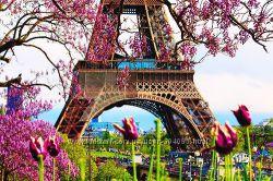 Отели Парижа дешевле, чем на букинге