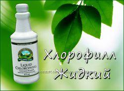 Сок люцерны - хлорофилл - зеленое чудо природы