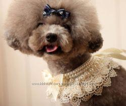 Воротничок с жемчугом для красивой собачки