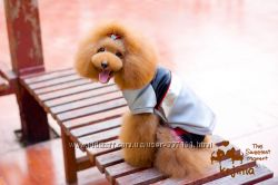 Байкерская куртка для собак