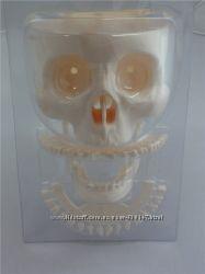 Тело Человека - собери и изучи - скелет Артема