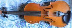 Скрипки 44, полные, Чехия