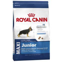 Royal Canin Maxi Junior корм для щенков
