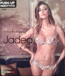 ������� ������ ����������� ����� Jadea