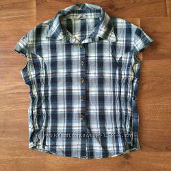 Рубашка в синюю клетку fruceling с вышивкой на спине на пуговицах короткий