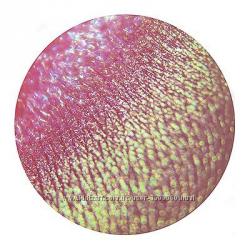Минеральные рассыпчатые тени ручной работы SIGIL inspired от Tammy Tanuka