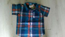 Модная рубашка Crazy8 2t