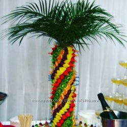 Аренда оригинальной фруктовой пальмы