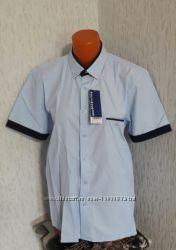 Рубашки с длинным и коротким рукавом